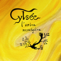 cylsee.jpg