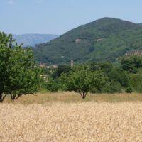 St-etienne-dalbagnan2.jpg