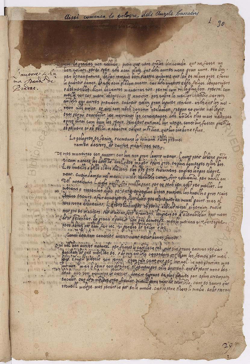 Primièra pagina del tractat Dels Auzels cassadors eissida del fulhet 30r del manuscrit Barb.lat.4087 conservat a la Biblioteca Apostolica Vaticana (Roma)